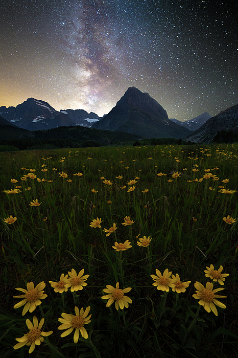 Milky Way / Many Glacier, Glacier National Park  by Nicholas Parker